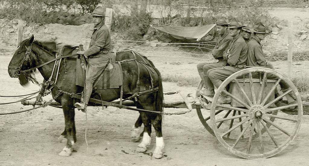 Us 3 2 Inch M 1885 Limber  Spanish American War Era